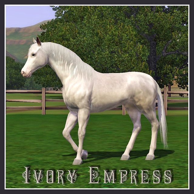 Ivory Empress - covershot 01