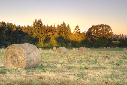 oregon canon places hay agriculture hdr acratech reallyrightstuff rrs washingtoncounty canonef24105mmf4lisusm eos7d