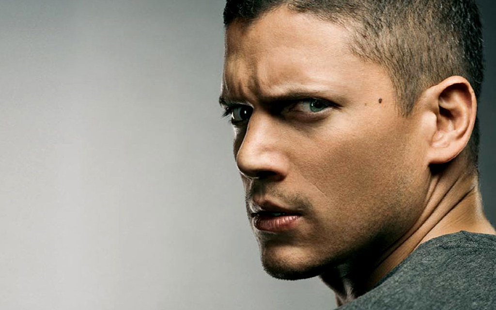 Wentworth Miller (Prison Break)