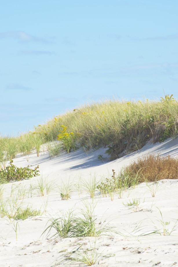 dunes final