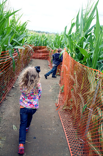 Corn-Maze_Nat-and-Aut-running