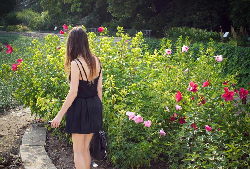 Nikitsky Botanical Garden