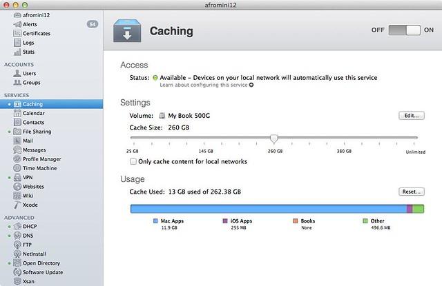 Mac OSX Server Caching service