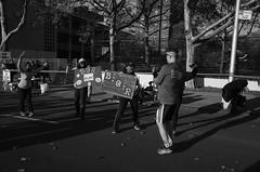 ING New York City Marathon 2013 | 131103-0010880-jikatu