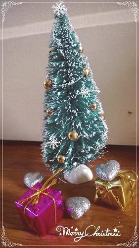 [Sunny TCOB, Noa BC] Christmas coming - Page 5 11436519985_b08b8de0ca
