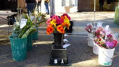 Flowers, Farmers Market, Sunnyvale, CA