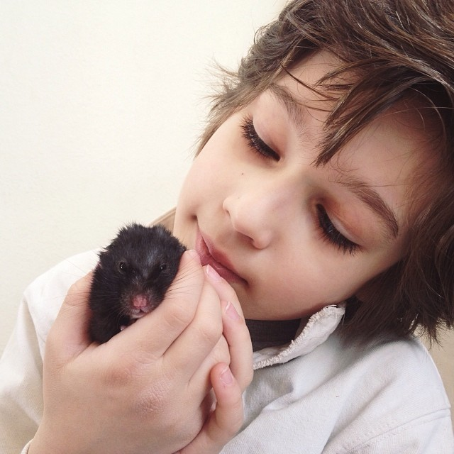 Will you please keep Luca in thought and prayer? This sweet black bear hamster has been his favorite of favorites for the past 2 years. Clover is his happy place and a source of constant comfort. We are saying goodbye today and it is oh so hard for our bo