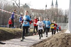 Crosslauf Klosterneuburg 2014