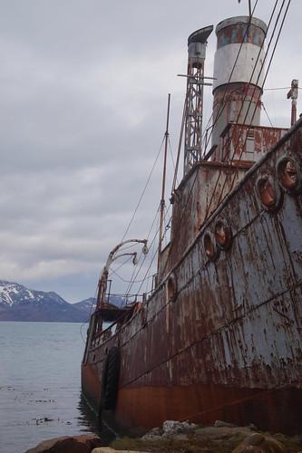 454 Grytviken