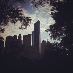 #NewYork #CentralPark #nycdimps #Gotham #skyscrappers
