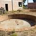 Agave Squishing Pits por bbum