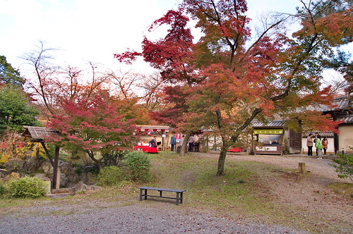 【写真】2012 紅葉 : 醍醐寺/2020-08-07/IMGP6874