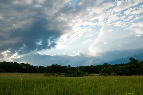 field watkinsglen