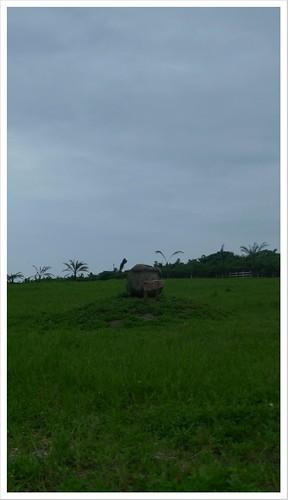 201306_花蓮_132