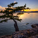 West from Juniper Point by Alexis Birkill Photography