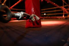 Gelungener Einstand für Kempener Boxer