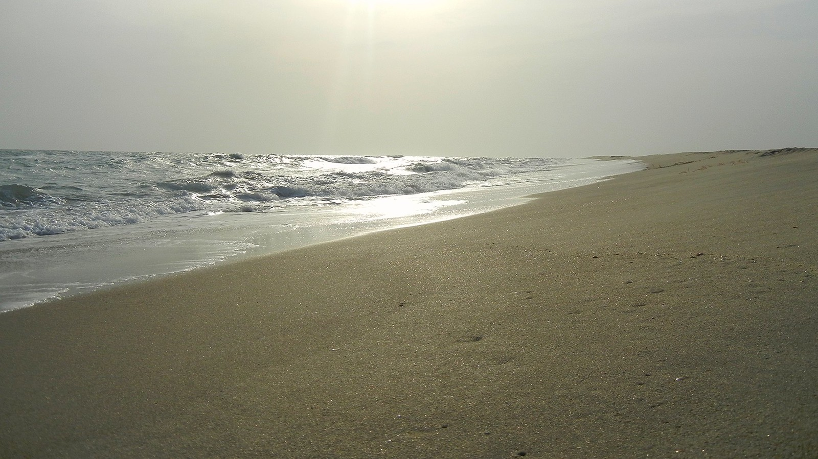 Oceans Meet
