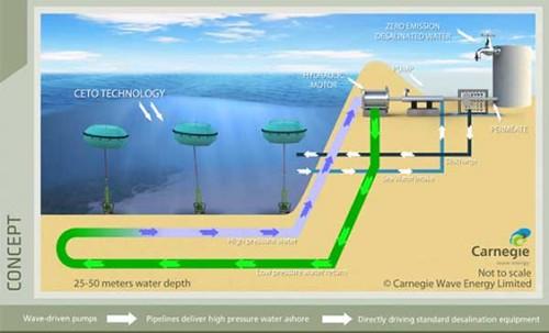 Carnegie Wave Energy опресняет морскую воду с помощью энергии волн
