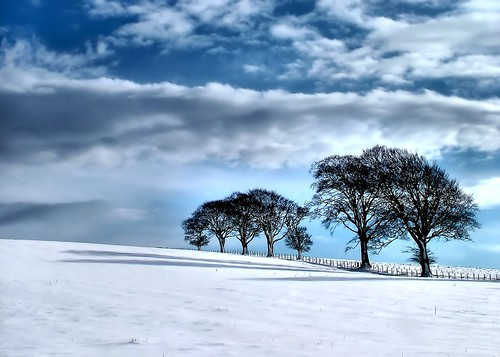 winter snow scotland highlands cromarty
