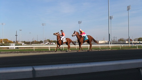Hot Squeeze #9 After Winning Race 3--Thundering Gale #2
