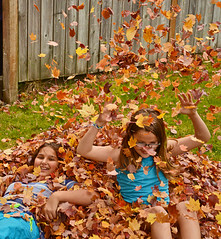 """Grownups have no idea about how imortant piles of leaves are to kids."""