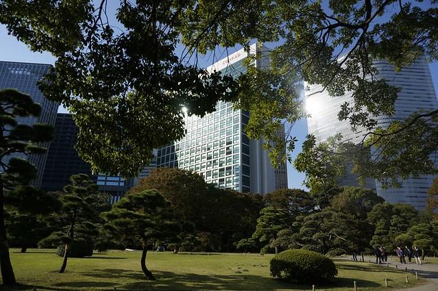 Hama Rikyu, conrad tokyo, gardens in tokyo - rebecca saw-007