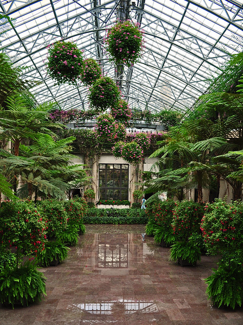 Conservatory - Orangery (1)