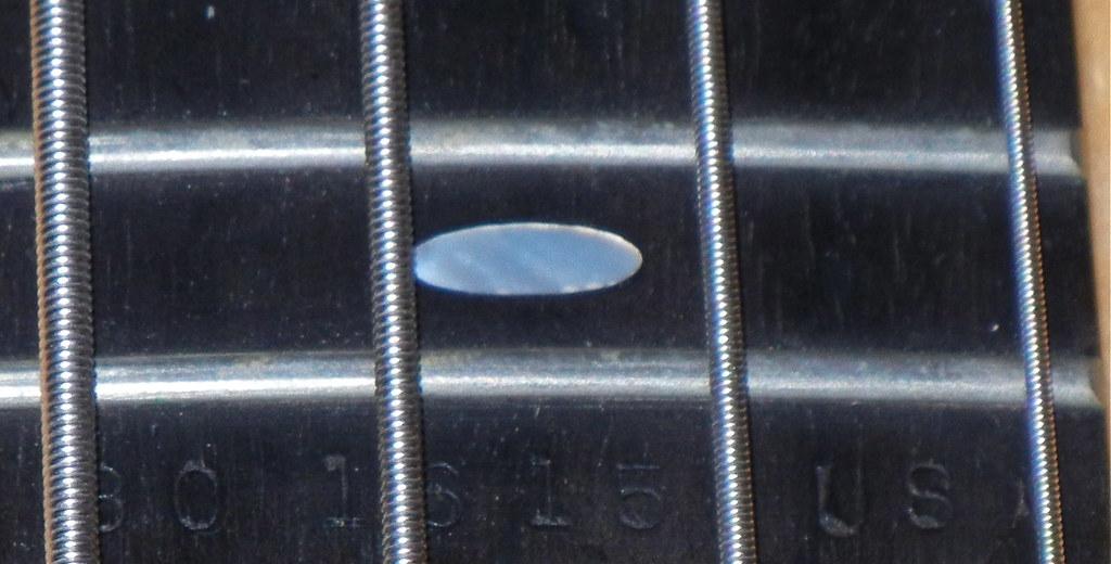 DSCN9102