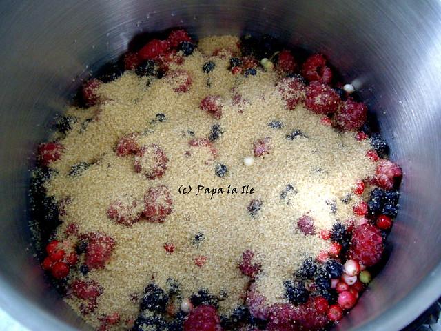 Tarte cu fructe de padure (3)