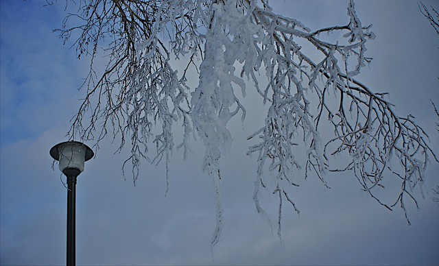 anteketborka.blogspot.com, hiver22