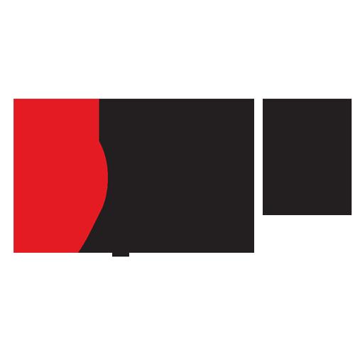 Logo_Polk-Audio_www.polkaudio.com_dian-hasan-branding_US-10