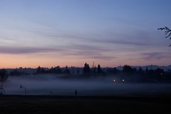 Klaus Naujok posted a photo:	Another day with ground-fog over the baseball fields. Now his dog is coming to join his master. Photo taken with the Konica Minolta AF DT 18–70mm @ 50mm (75mm FF).