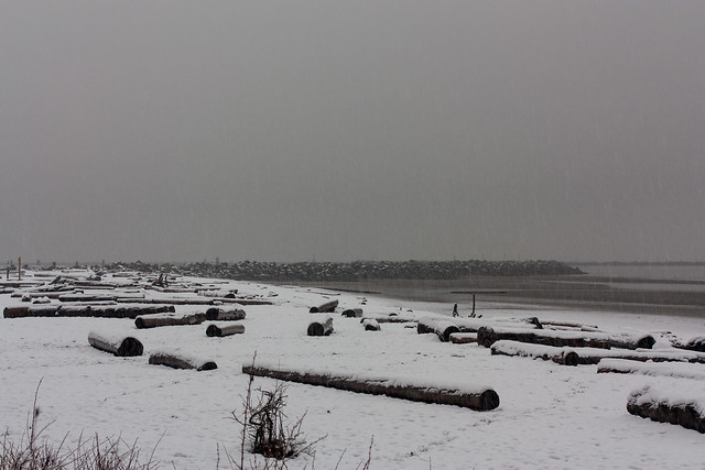 UBC Wreck Beach