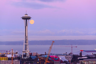 Morning moon behind the needle