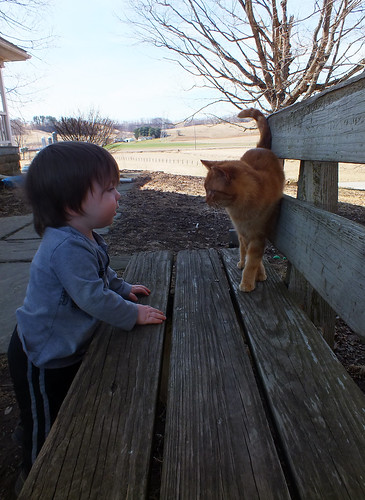 Jack and the cat