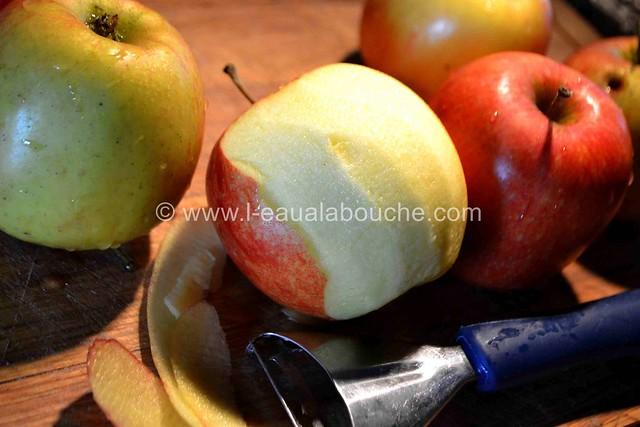 Tatin aux Pommes © Ana Luthi Tous droits réservés