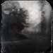 houston    fog 12 by jack barnosky
