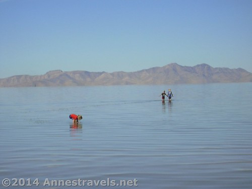 Wading in the Great Salt Lake, Great Salt Lake State Park, Utah