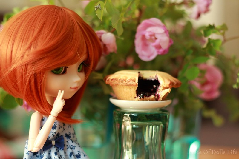 Care for blueberry pie