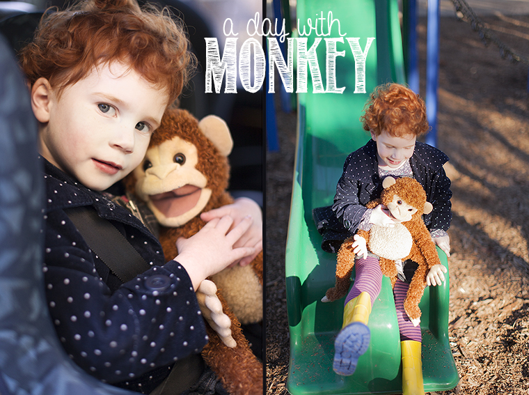 a day with monkey