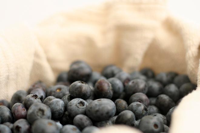mascapone fruit tart 1