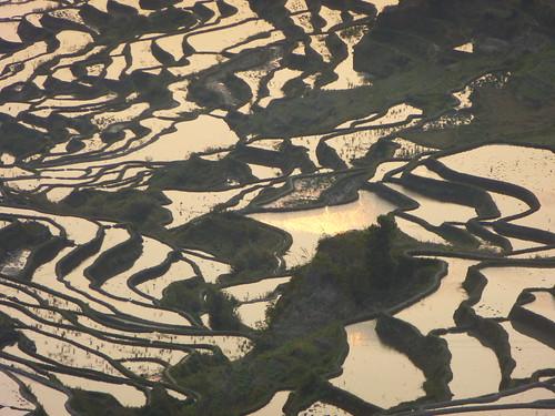 Yunnan13-Yuanyang 1-Duoyishu (57)