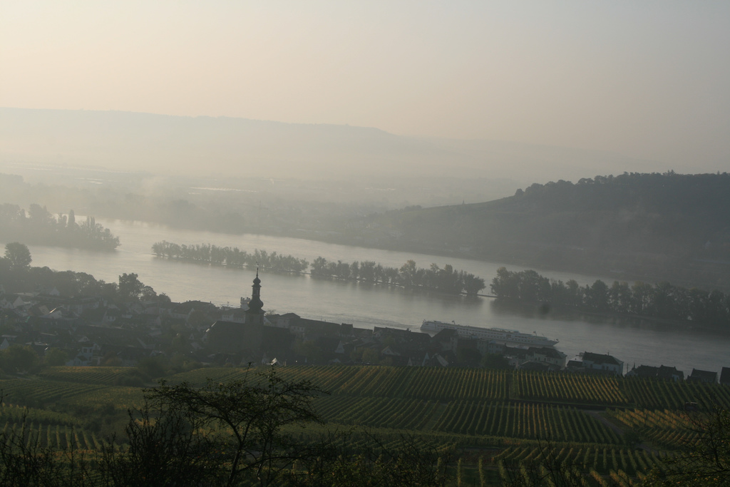 32. Rin en Mainz-Bingen. Renania-Palatinado. Autor, Frans16611