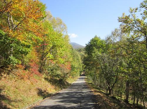 色付いた散歩道と縞枯山 2013年10月12日9:45 by Poran111