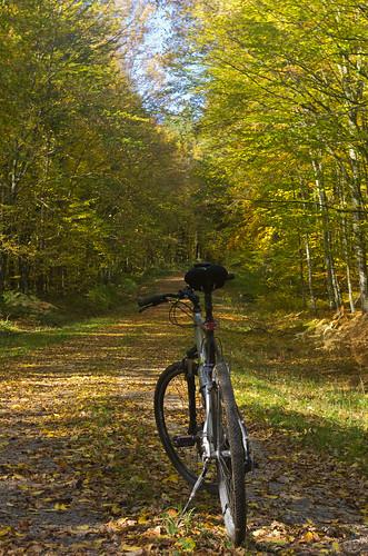 autumn bicycle landscape october croatia listopad coloredleaves krušak šumarica pentaxk5 vedranvrhovac vukomeričkegorice poučnastazašumarica