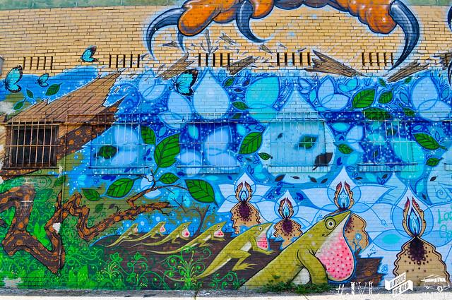 Jax Mural Project / Jacksonville, Florida
