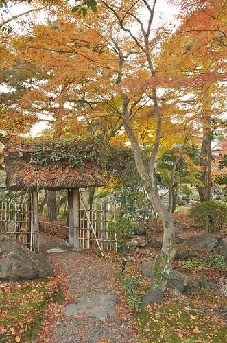 【写真】2013 紅葉 : 白沙村荘/2020-12-28/IMGP3687