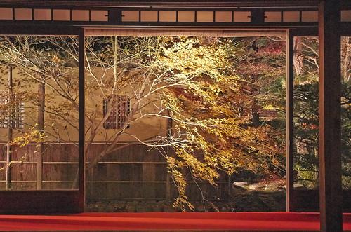 【写真】2013 紅葉 : 天授庵/2020-05-17/IMGP3726