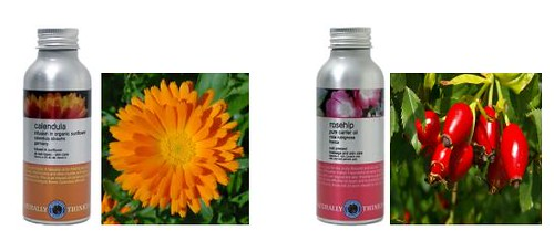 Rosehip Oil Calendula Oil Carrier Oils Vegetable Oils