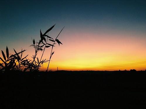 avidasettings uploaded:by=flickrmobile flickriosapp:filter=nofilter
